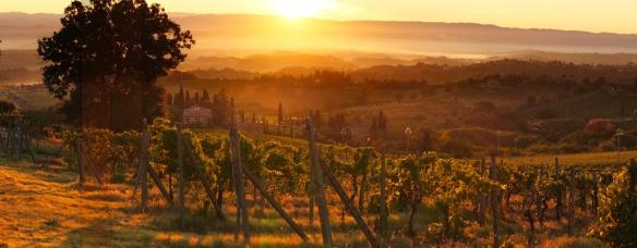 tuscan hillssm